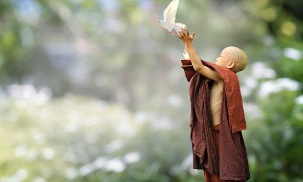 """Những nỗi đau – sự """"đánh thức"""" để chạm vào trái tim, sự thấu hiểu và hiện thực!!"""
